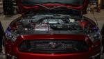 Zbiorniczek wyrównawczy Mishimoto FORD MUSTANG ECOBOOST/V6/V8 2015+