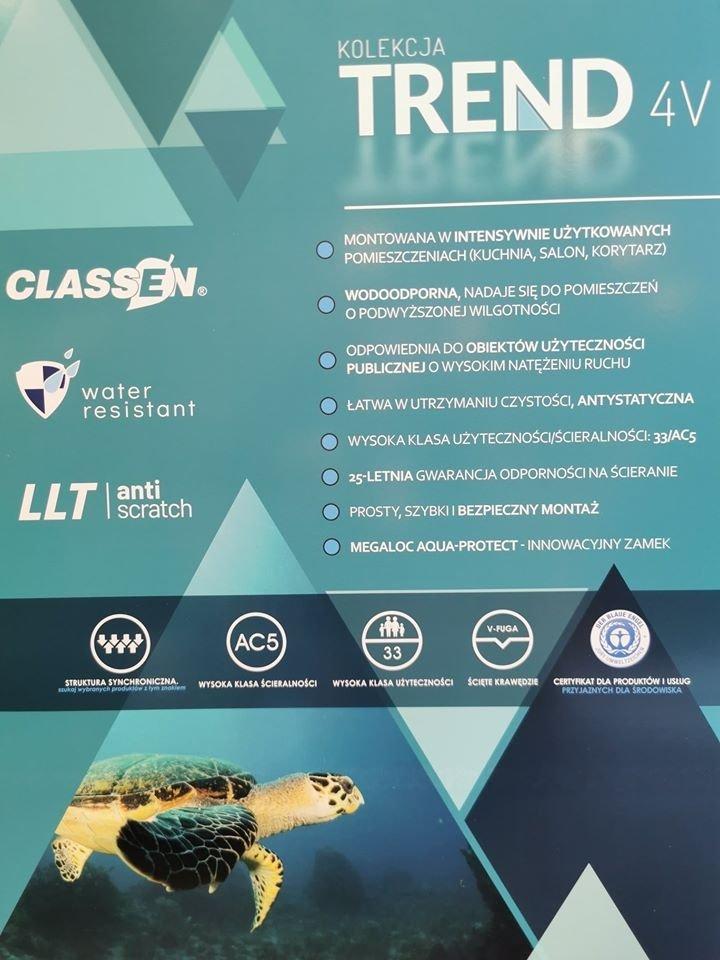 CLASSEN - TREND 4 V / Dąb Wigry 8mm AC5 V4  52602