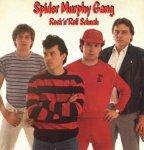 Spider Murphy Gang - Rock'n'Roll Schuah (LP)