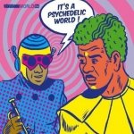 It's A Psychedelic World - Vibrations World 04 (CD)