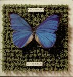 Schmetterlinge - Die Letzte Welt (2LP)