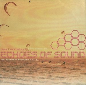 Echoes Of Sound - Need Somebody (Who Needs Me) (12'')