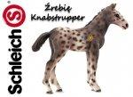 Schleich Koń ŹREBIĘ Knabstrupper KONIE Figurka 13760