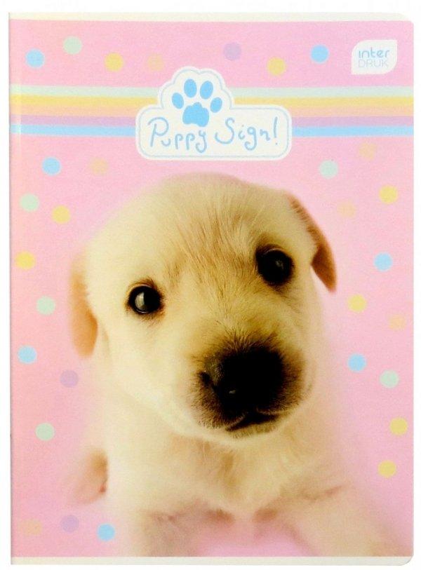 PIESEK Zeszyt 16 Kartkowy w 3 kolorowe LINIE Puppy