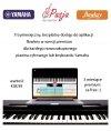 Yamaha NP-12 B