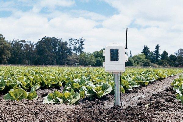Davis 6345 stacja meteorologiczna glebowa bezprzewodowa rozszerzenie do 10 czujników temperatury, wilgotności gleby, zwilżenia liścia