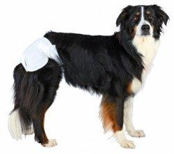 Trixie TX-23635 Pieluchy dla psa L 12szt