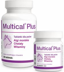Dolfos Multical Plus 90 tabletek