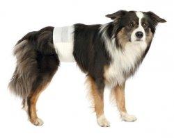 Trixie pampas dla psa S-M 12szt. TX-23641