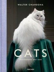 Walter Chandoha Cats