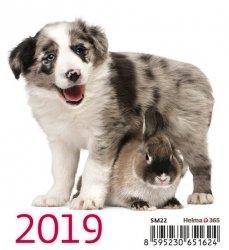 Kalendarz biurkowy Mini Przyjaciele 2019 10 sztuk