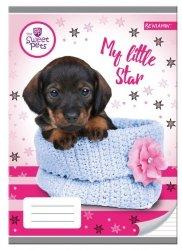 Zeszyt A5 w trzy linie kolorowe 16 kartek Pies Sweet Pets 10 sztuk