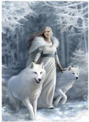 Puzzle 1000 Anne Stokes Collection Winter G