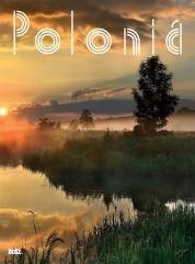 Polska wer. hiszpańska Polonia w.2018 BOSZ