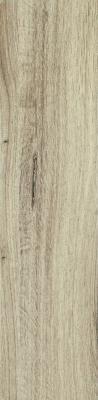 Dublin Almond 15,5x62