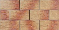 CERRAD kamień cer 3 jesienny 300x148x9 g1 m2.