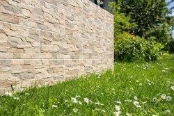 CERRAD kamień aragon savanna 450x150x9 g1 m2.