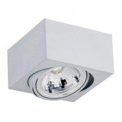 NOWOCZESNY SPOT SUFITOWY LED ARGON RODOS   3069 5W