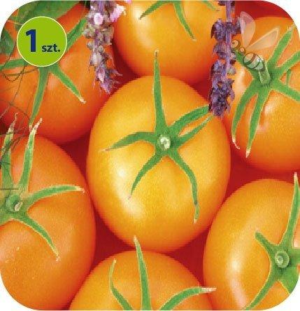 Pomidor szczepiony Bolzano