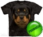 Rottweiler Puppy - The Mountain