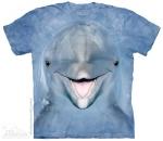 Dolphin Face - The Mountain