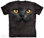 Big Face Black Cat - The Mountain