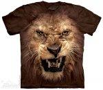 Big Face Roaring Lion - The Mountain