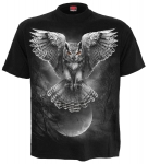 Wings of Wisdom - Spiral