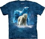 Polar Collage -  The Mountain