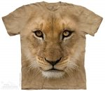 Big Face Lion Cub - T- shirt The Mountain