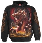 Awake The Dragon - Bluza -Spiral