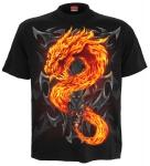 Fire Dragon - Spiral