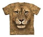 Lion Warrior - Dziecięca - The Mountain