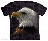 Bald Eagle Portrait - The Mountain