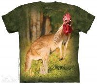 Kangarooster - Kangurokogut - The Mountain