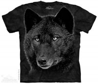 Black Wolf - The Mountain