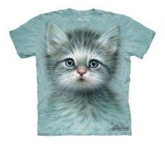 Blue Eyed Kitten - The Mountain - Junior