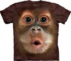 Big Face Baby Orangutan - The Mountain