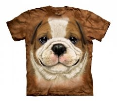 Big Face Bulldog Puppy - The Mountain - Junior
