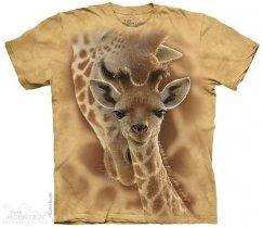 Newborn Giraffe - The Mountain