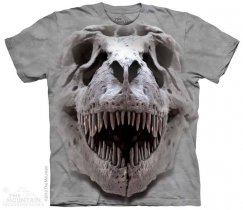 T-Rex Big Skull - The Mountain