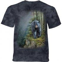 Rocky Outcrop Black Bear - The Mountain