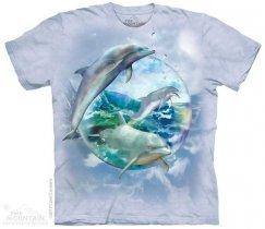 Dolphin Bubble - The Mountain