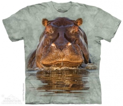Hippo - The Mountain