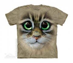 Big Eyes Kitten Face - Kot - The Mountain - Junior