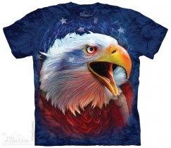 Revolution - Eagle - The Mountain