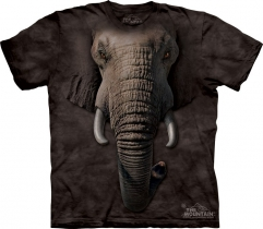 Elephant Face  - The Mountain