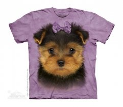 Yorkshire Terrier Puppy - The Mountain - Junior