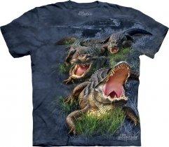 Gator Bog -  The Mountain