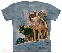 Wolf Couple Sunset - The Mountain